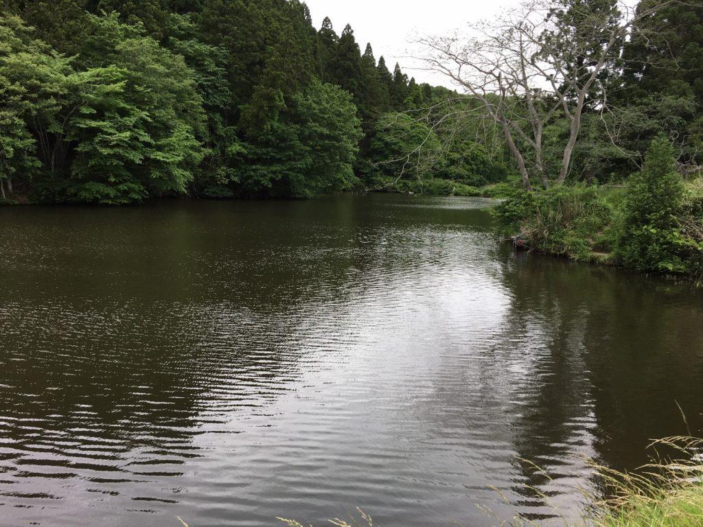 釣り_170605_0018